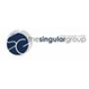 The Singular Group Limited